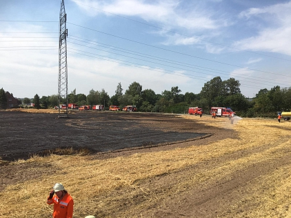 Einsatz_Flächenbrand_26.07.2019_005©Freiwillige Feuerwehr Essern