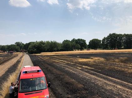 Flächenbrand_Harrienstedt_30.06.2019_002©Freiwillige Feuerwehr Essern
