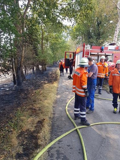 Flächenbrand_klein_Lavelsloh_25.07.2019_001©Freiwillige Feuerwehr Essern