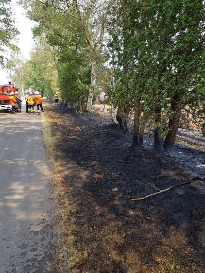 Flächenbrand_klein_Lavelsloh_25.07.2019_002©Freiwillige Feuerwehr Essern
